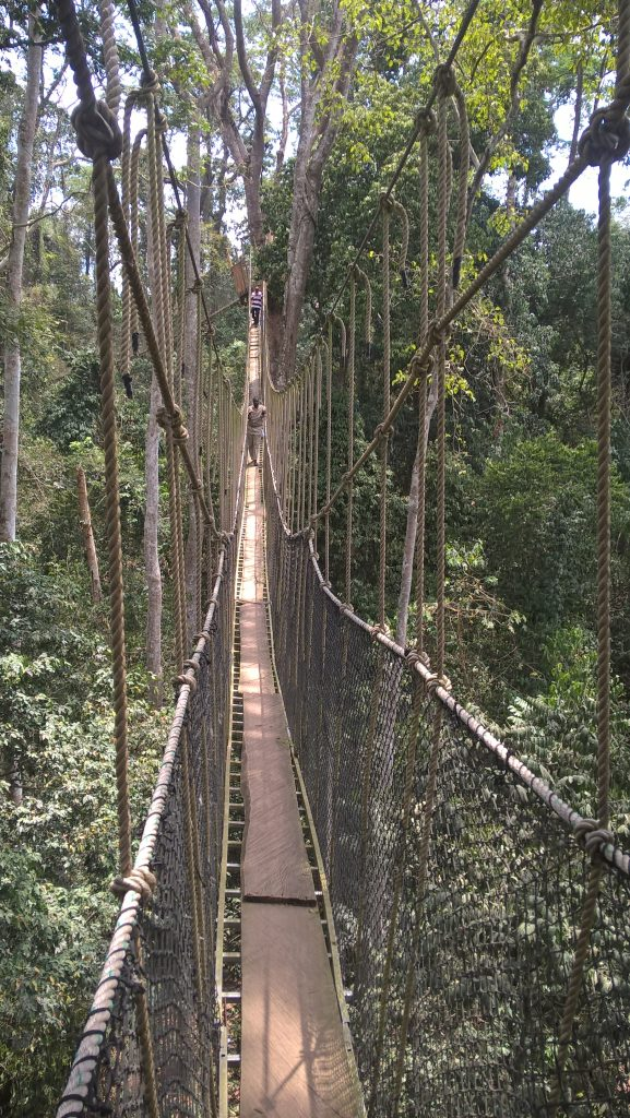 0f1b82c2 It has five of these bridges, all of which are high, and one very high  indeed as it crosses a valley. It is a great deal more adventurous than the  one at ...